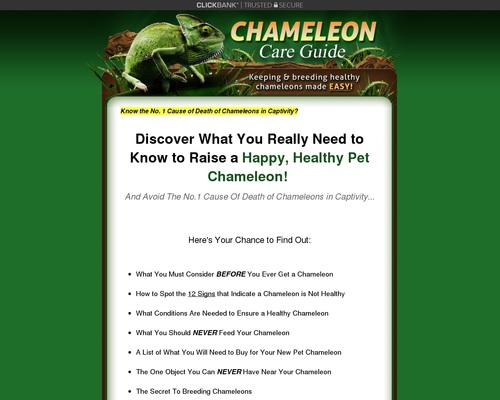 Chameleon Care Guide – Keeping and Breeding Healthy Chameleons Made Easy!